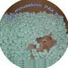 Mousekinn-_alteration2_